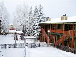 Jackson Hole Towncenter - Wyoming vacation rentals