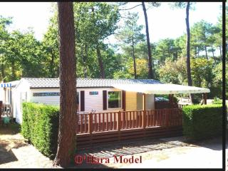 Modern Mobile Home on French 4 star site - La Palmyre-Les Mathes vacation rentals