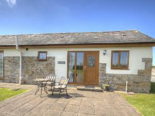 Tryfan Cottage Anglesey - Brynsiencyn vacation rentals