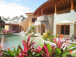 Ocean view, Pool & Jacuzzi WOW! Come meet the lovely Costa Rican Critters! - Manuel Antonio vacation rentals