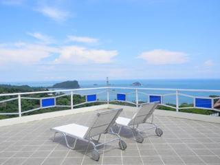 Monkeys Galore! Amazing Ocean Views, Pool & Waterfall Jacuzzi - Manuel Antonio vacation rentals