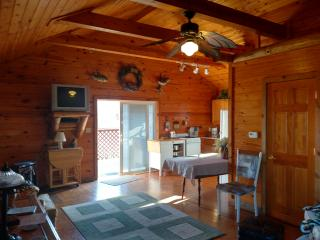 Retreat Cabin for all season stay or for any event - Bethany vacation rentals