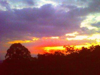 bigislandgrowing - Kailua-Kona vacation rentals