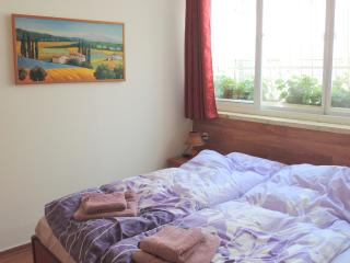 Pleasant Vacation Apartment in Religious Area - Nes Harim vacation rentals
