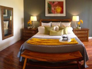 Dancing Dolphins Point: SPECIAL May June $175/nt - Waikoloa vacation rentals