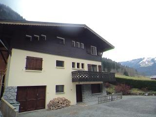 Spacious 3-bedroom apartment in Morzine - Morzine-Avoriaz vacation rentals