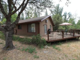 Cozy Cottage in the Woods - Mariposa vacation rentals
