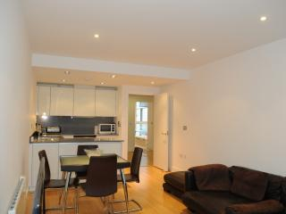 LUXURY APARTMENT - CITY OF LONDON - London vacation rentals