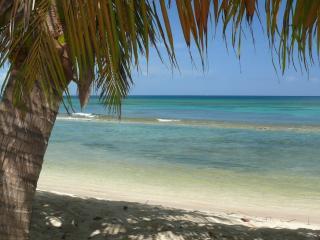Caracas at Bastimento Beach - Isla de Vieques vacation rentals