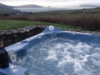 Wild Atlantic View - Portmagee vacation rentals