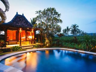 Rumah Capung Ubud Single Joglo - Ubud vacation rentals