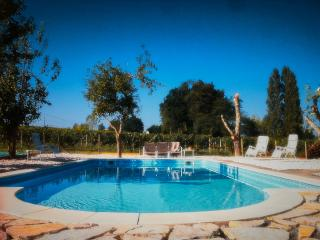 French Vineyard Vacations - Gironde vacation rentals