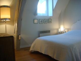 Duplex Saint Nicolas - Blois vacation rentals