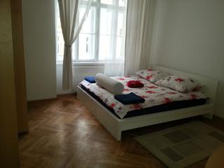4 Bedrooms renovated  flat  - brand new -downtown - Prague vacation rentals