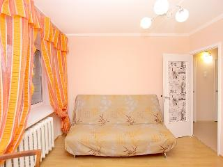 Comfortable apartment is waiting for you! - Saint Petersburg vacation rentals