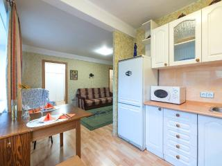 Ideal apartment for a big family - North-West Russia vacation rentals
