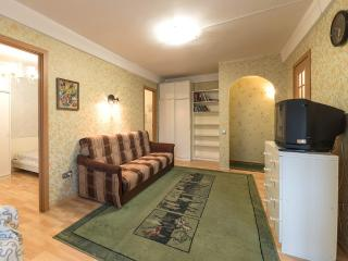Very big and very comfortable apartment - Saint Petersburg vacation rentals