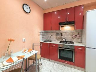 Lovely apartment not far from the center - North-West Russia vacation rentals