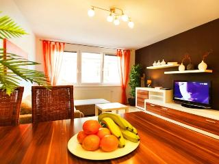 Apartment Vienna De Luxe - Summer PROMO - Vienna vacation rentals