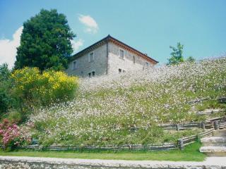 I Tre Falchi - Todi vacation rentals