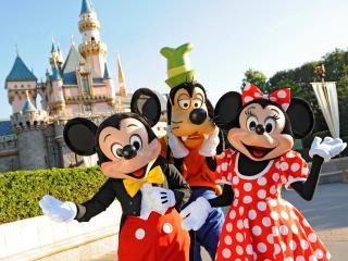 Between Paris and Disneyland - Seine-et-Marne vacation rentals