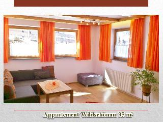 Apartment Wildschoenau Tyrol Austrian Alps 102 - Oberau vacation rentals