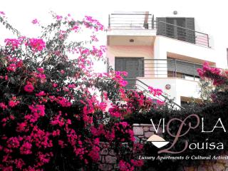 Villa Louisa - Monemvasia - Xifias vacation rentals