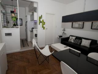 Palermo - Beautiful Vacation Apartment, 1 BR - Buenos Aires vacation rentals