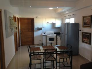Brand new apt ,Minimal Style 67 mt2 uploaded - Santo Domingo vacation rentals