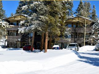 Affordable! 2BR/1BA Magical Mountain Retreat Condo - Summit County Colorado vacation rentals