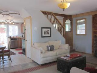 Remodeled Rustic Big Bear Cabin w/ Chef's Kitchen - City of Big Bear Lake vacation rentals