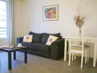 10 minutes from Versailles Exhibit. - Issy-les-Moulineaux vacation rentals