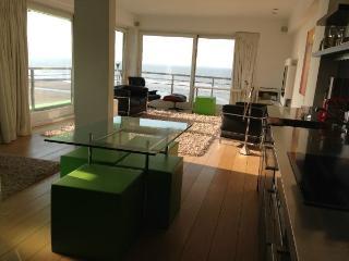 schopenhauer-at-the-beach - Koksijde vacation rentals