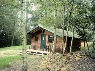 Five Pines - Shere vacation rentals
