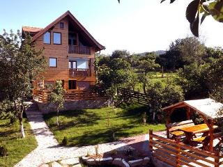 • Studio ZOLLO II • at the Carpathian Mountains - Sibiu vacation rentals