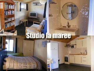 Studio Au Passage du Gois - Beauvoir-Sur-Mer vacation rentals