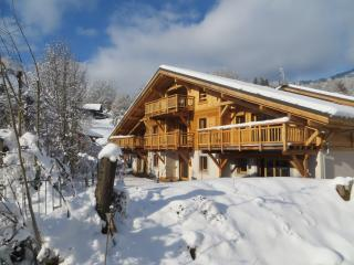2 bedroom 2 bathroom ground floor apartment - Samoëns vacation rentals