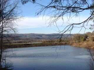 Twin Lakes Heart of Tennessee - Pikeville vacation rentals