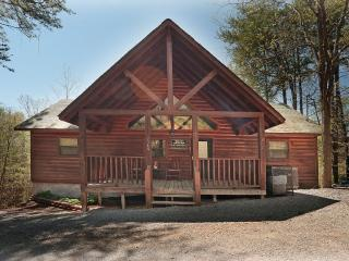 Bear Heaven  Luxury 2 Bed Cabin! Like New - Tennessee vacation rentals