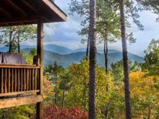 MY HAPPY PLACE - Blue Ridge vacation rentals