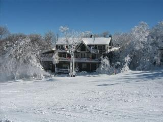 112 Skiway - Beech Mountain vacation rentals