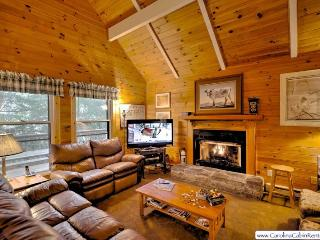 Greenhouse - Beech Mountain vacation rentals