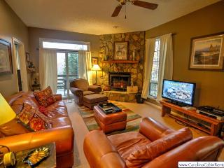 Yonahlossee Getaway - Blowing Rock vacation rentals