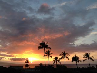 Wailea Ekolu - 180 Degree Ocean View from Every Rm - Wailea vacation rentals