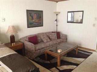 Studio - Copper Chase 114 - Brian Head vacation rentals