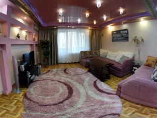 apartment in the center - Kherson vacation rentals