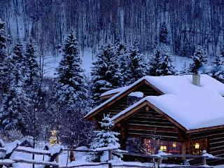 Winter Wonderland TEST property - Baghdad vacation rentals