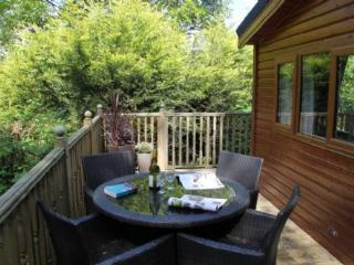 Chrisenroy lodge Windermere/Ambleside private spot - Windermere vacation rentals