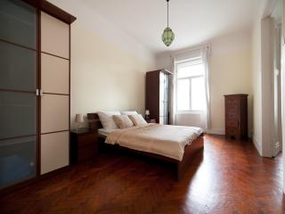 Luxury apartment next to Synagogue - Budapest vacation rentals