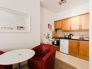 City Centre Studio located near St Stephen's Green - Dublin vacation rentals